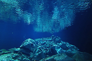 Sugar Bowl cenote from below